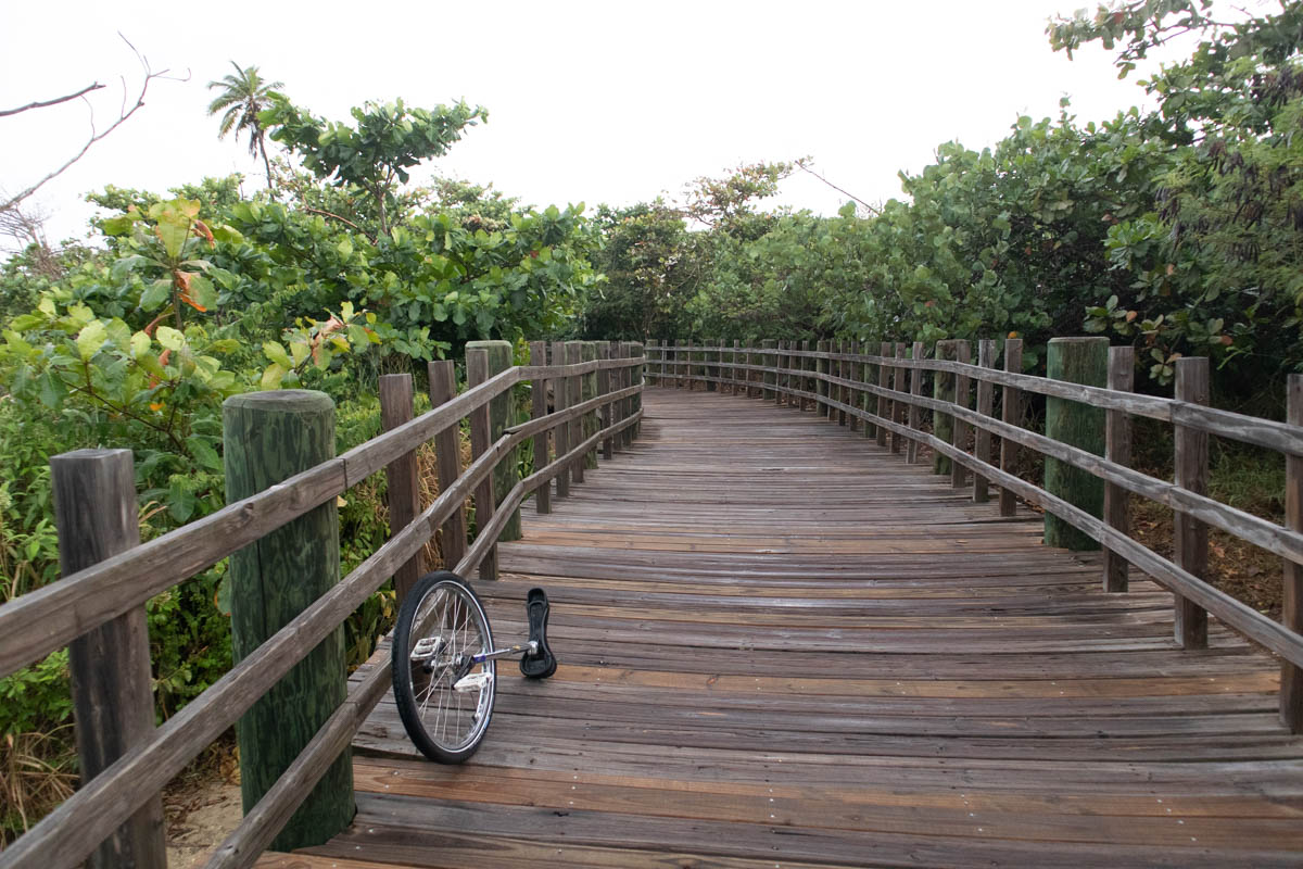 Boardwalk through tidal marsh, with unicycle